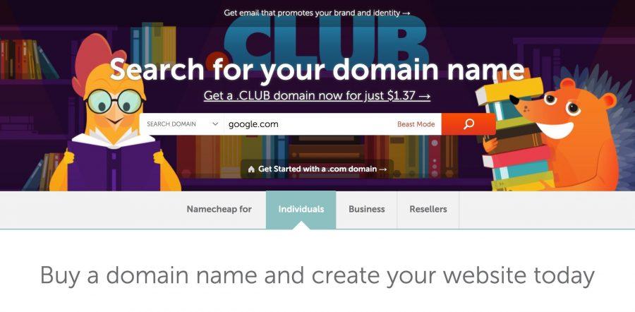 namecheap domain search screen